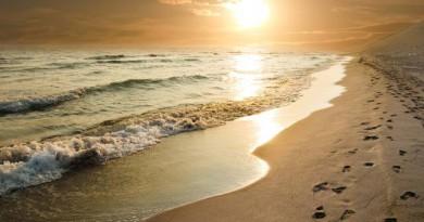 Beaches of Basilicata