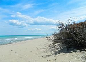 spiagge del molise : marina di petacciato