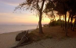 spiaggia-parco-sterpaia