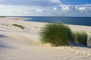 spiaggia di caleri